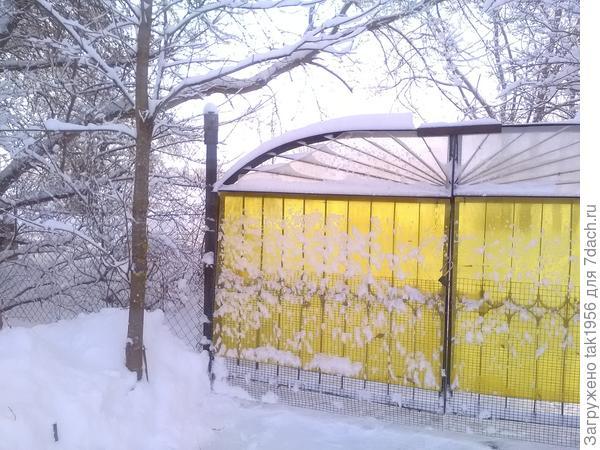 Редкое солнышко заменяют ворота...