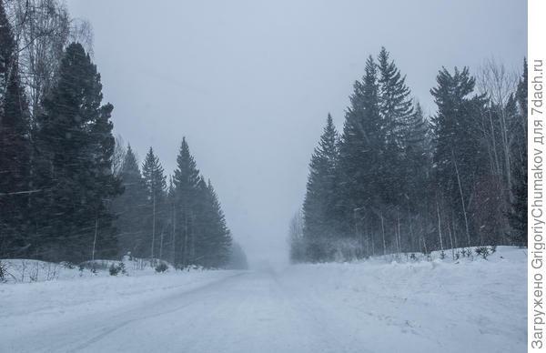 Вот февраль нынешнего года в деревне
