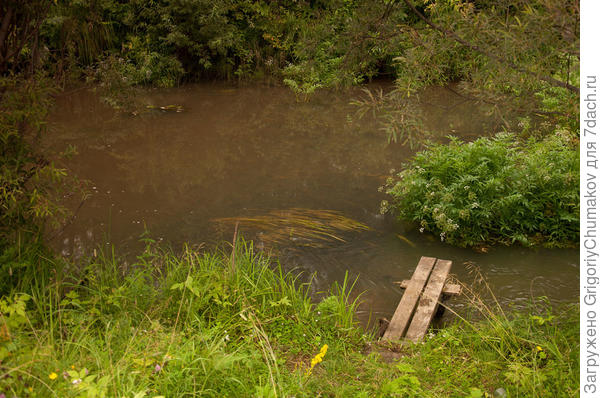 Река Суразовка в деревне Уланово