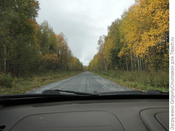 дорога и что то впереди