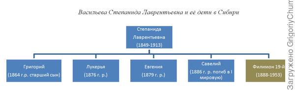 иерархическая блок схема Васильевых приехавших в Сибирь