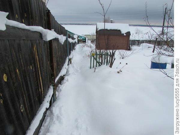 дорожка в снегу по колено