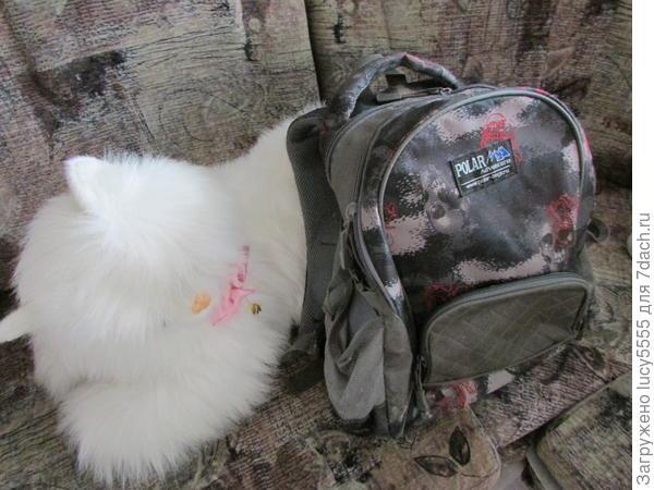 Походный рюкзак для недолгих и недальных поездок
