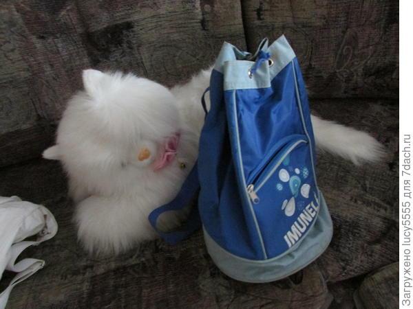 Моя торба