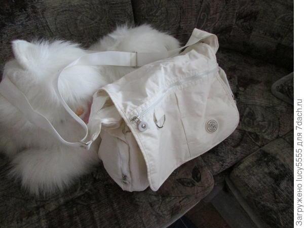 Белая сумка объёмом с ведро