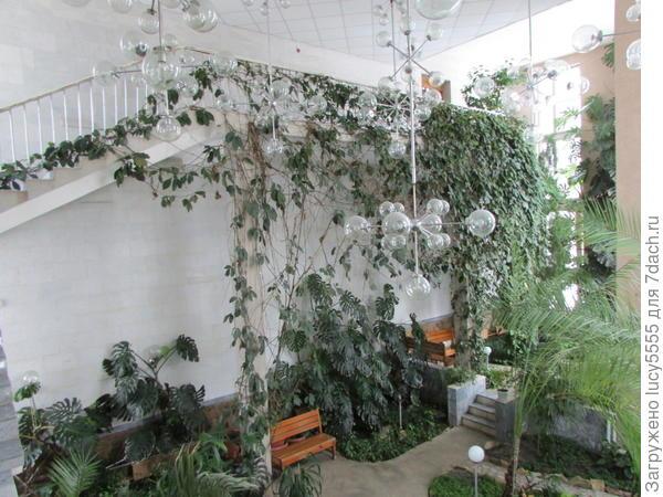 зимний сад и проход по нему в другой корпус