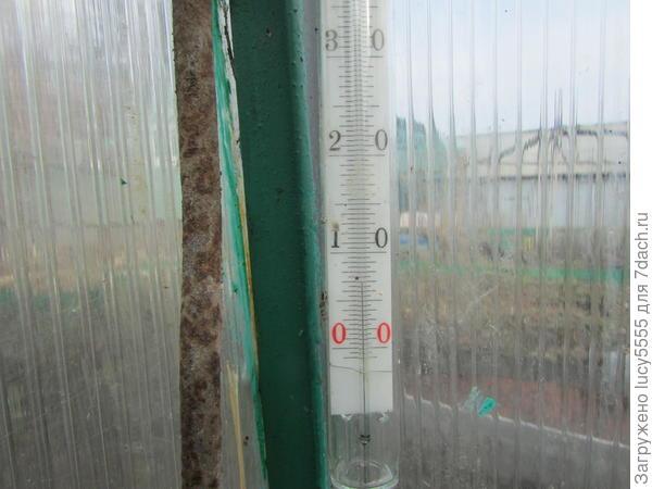 температура земли 7 градусов, хотя в теплице днём в солнечный день нагревается до 30