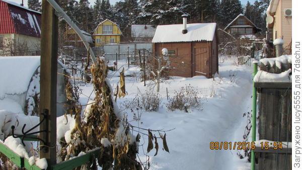 Опять зимний пейзаж