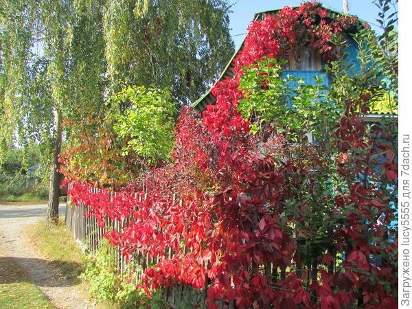 Это домик у самых ворот. Весь красный такой.