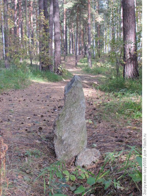 Кто-то камень специально вертикально поставил. Придорожный патруль.