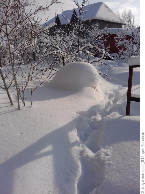 Снега на чищенных в прошлую пятницу дорожках по колено)