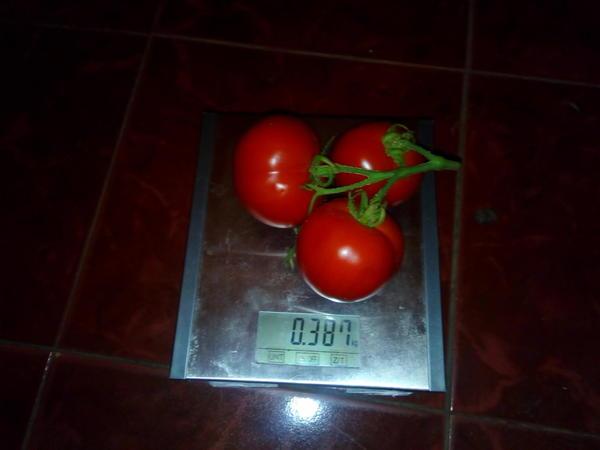 у Любаши есть тройня весом 387 граммов