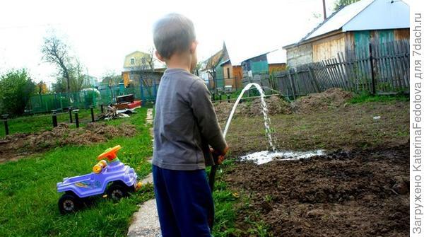 матвей поливает огород
