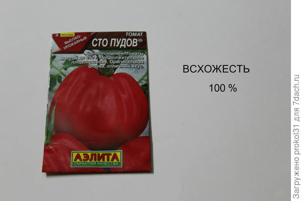 недостаточности витамина томаты сто пудов отзывы с фото можно сделать