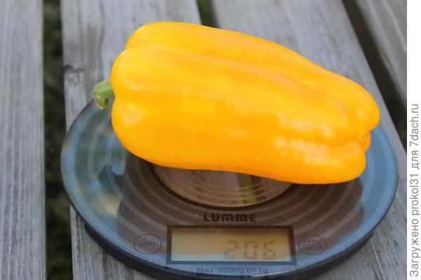 вес перца