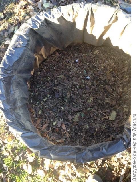 Результат после измельчения листвы
