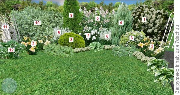 Обзор правой стороны цветника. На одновременное цветение всех растений не обращаем внимание, это всего навсего коллаж