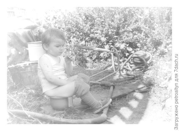 неспешность бытия в бабушкином огороде