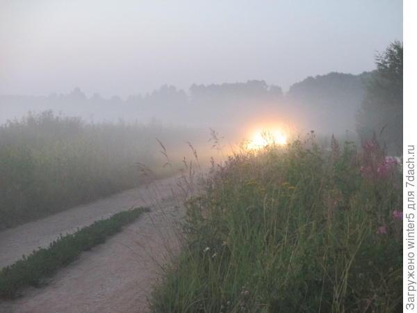 И ночью, и днём и в тумане
