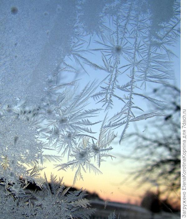 Мороз рисует на стекле....