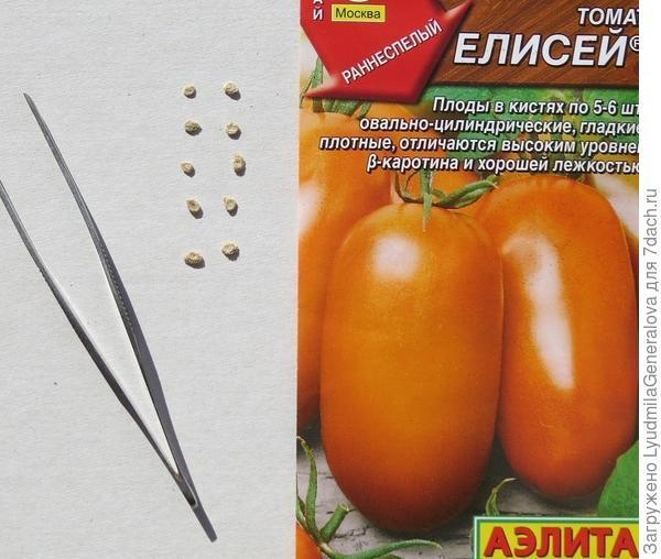 Семена для тестирования