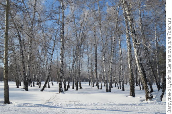 В марте-апреле наш парк выглядит так.