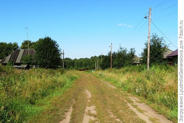 Август. По заросшей травой-муравой дороге видно, что транспорт здесь редкий гость.