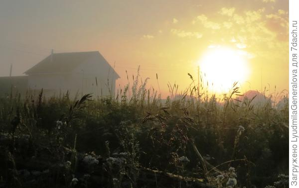 6 утра. Солнце борется с туманом.