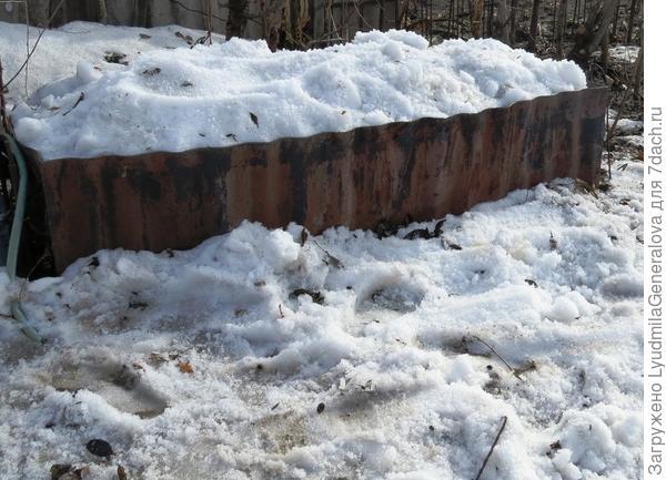 Наполненная снегом ёмкость для получения талой воды.