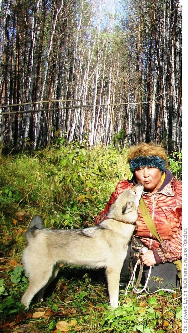 С Белкой хожу недалеко в тайгу. Она помогает мне бороться со страхами.
