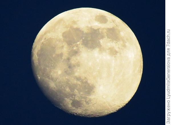 Луна 8 мая 2017 г.