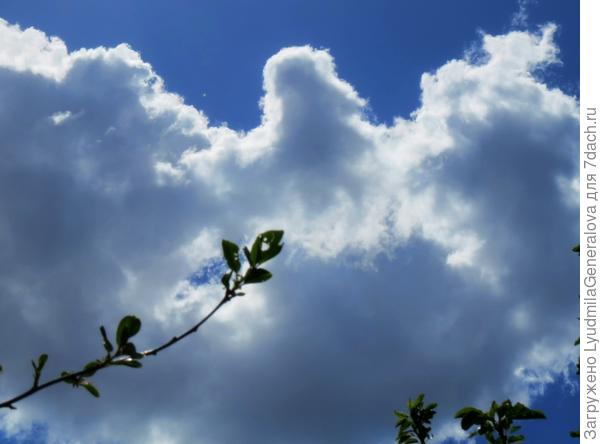 небо в мае