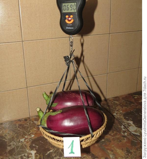 Два первых плода весят 650 гр ( 365 гр и 285гр (40 гр - тара)