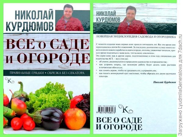 Книга Н.Курдюмова