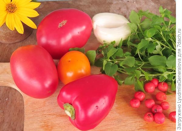 Ингредиенты для помидорной тюри (с мокрецом)