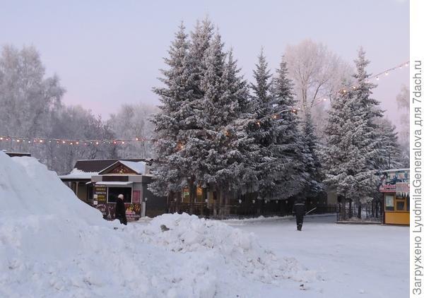 А это в парке, всё в морозном тумане. Снег (слева) - для горки.
