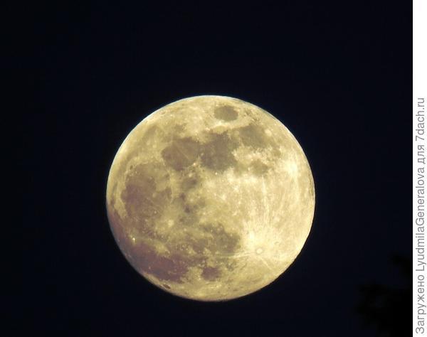 Штатива нет, но удалось поймать более-менее чёткий кадр. Вот такой была Луна в первый вечер весны.  Фотография не весенняя, конечно, но может и на Луне тоже наступила весна.  15 лунные сутки.  Круглолицая наша спутница.