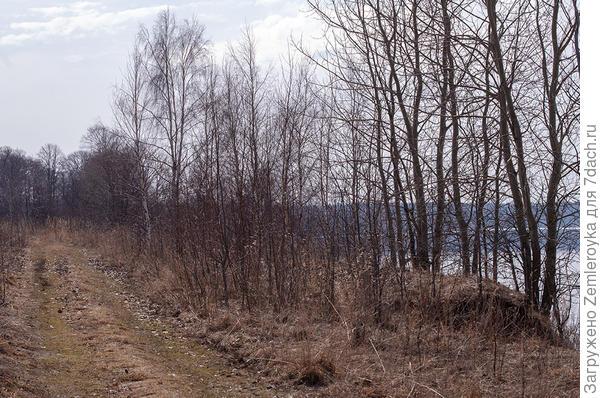 Природа в Ярославской области в середине апреля