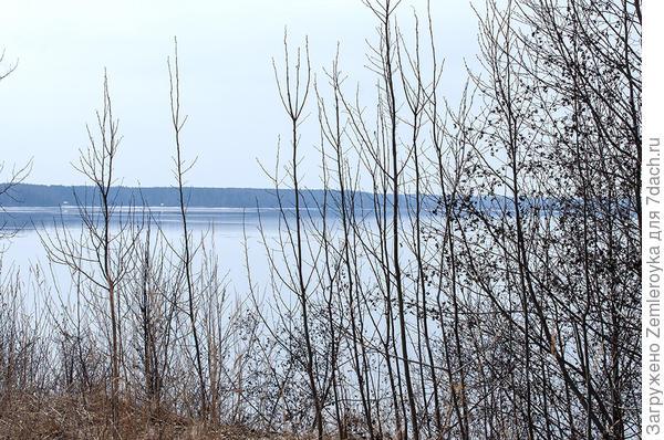 Волга в середине апреля