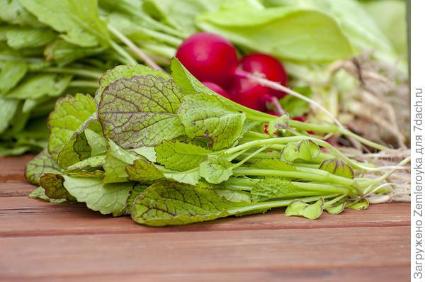 Дополнение к салату