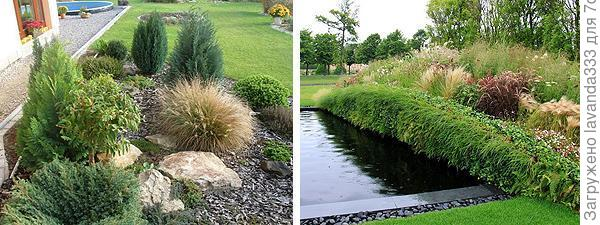примеры уголков сада