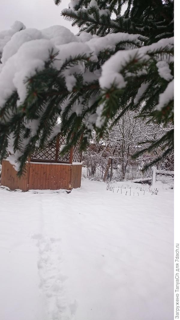 Дачка в снегу.