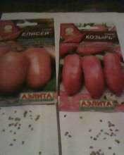 В посылке пришло 7 пакетиков семян томатов,как и было заявлено.Пакетики красочно оформлены,но нет указаний по обработке семян.Надо полагать что это надо делать самим.И так - первая пара пакетиков - это семена детерминантных сортов томатов - Козырь и Елисей.Соответственно в пакетиках положено 42 шт и 40 шт.