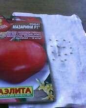 семена томата Мазарини F1 для посева