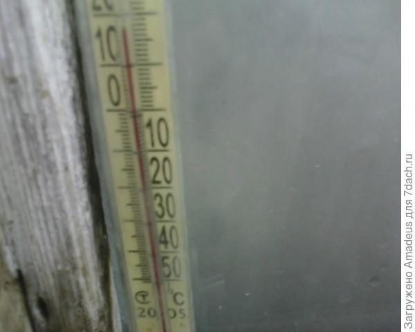 Температура в теплице