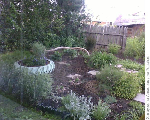 Мои сад — моя страсть