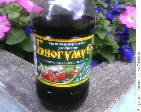 препаратом Биогумус /для овощей и томатов/