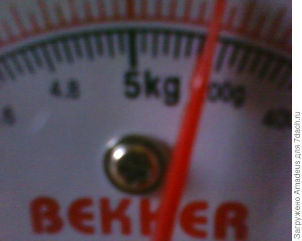 Вес самой крупной из снятых