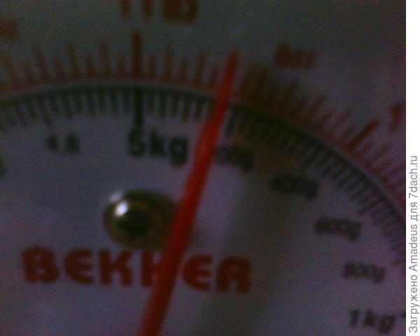 Вес самой крупной из них