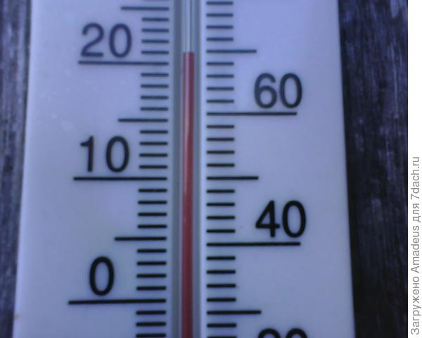 Температура воздуха +